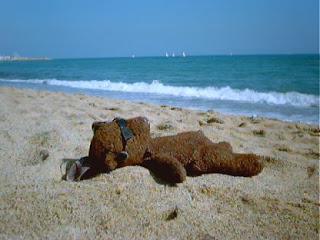 nude sunbathing teddy bear