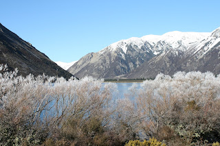 Hoar frost at Lake Pearson NZ