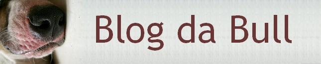 Blog da Bull ::: Bull Terrier