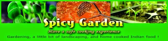 Spicy Garden