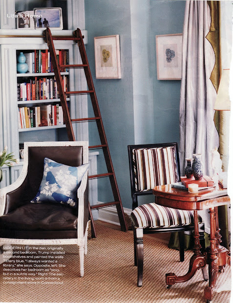 Home Libraries with Ladders