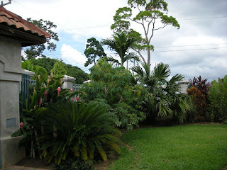 garden, La Ceiba, Honduras