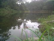 Empangan air sungai kuning