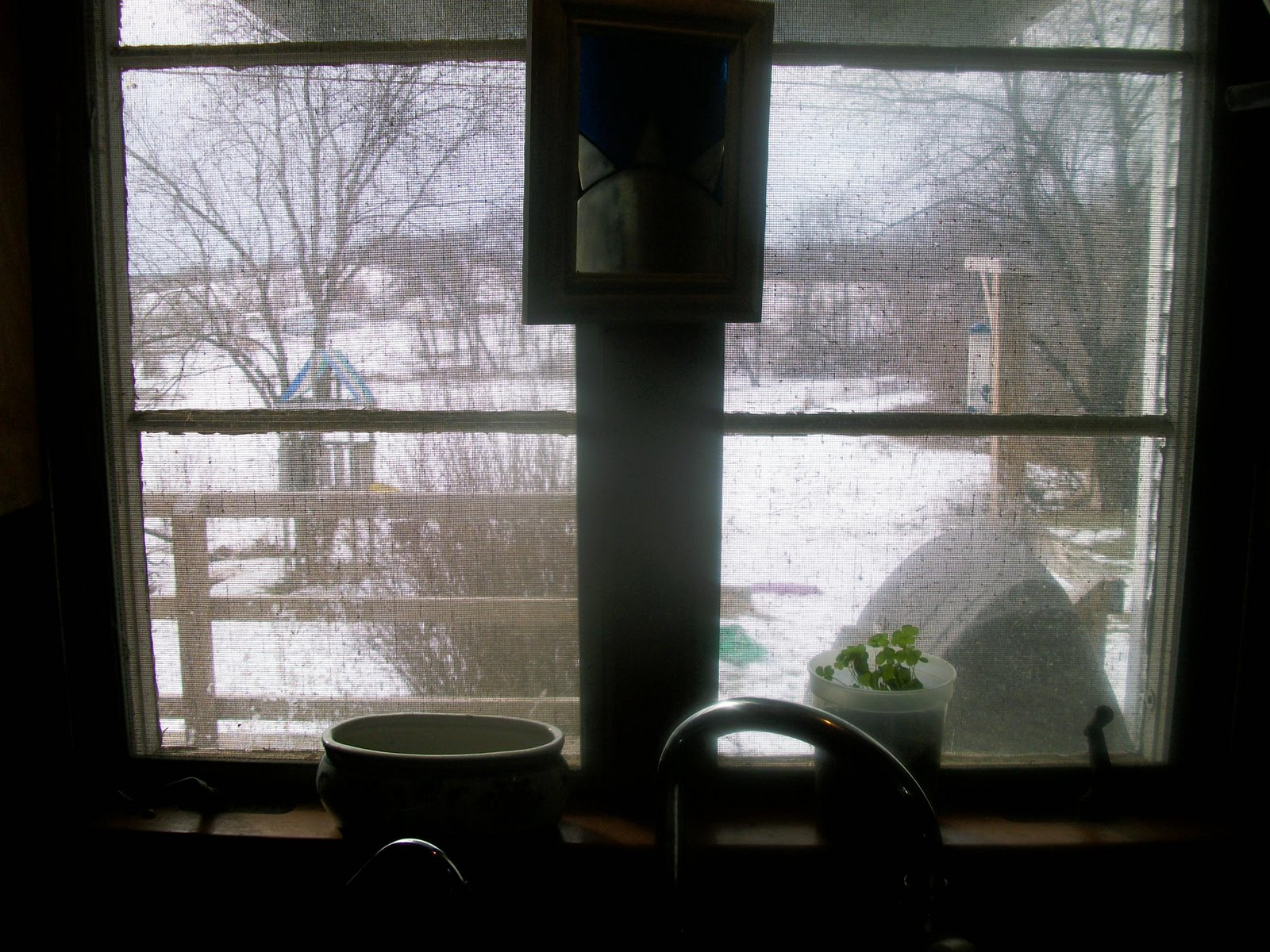 Stairstep boys: View From My Kitchen Sink