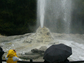 My New Zealand Vacation, Rotorua, Lady Knox Geyser, Photo10531