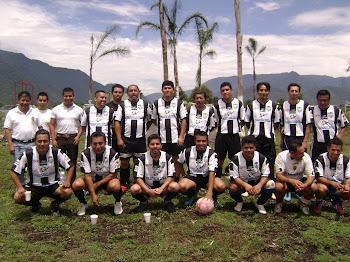 EQUIPO SDTEV29-2010