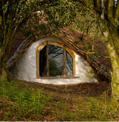 Survival kit white 3 2010 5000 forest house for How to build an earth sheltered home