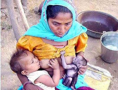 Mulher indiana amamenta simultaneamente um bebê humano e um filhote de macaco.
