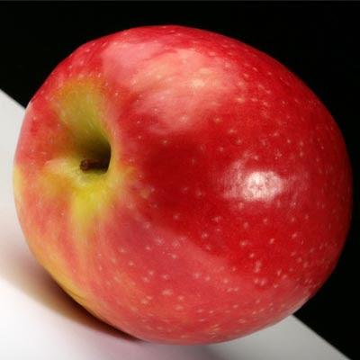 http://2.bp.blogspot.com/_7Q-tD8eW2rE/SJHVCFeO2sI/AAAAAAAABeY/x9jOFz9J4fc/s400/apple.jpg