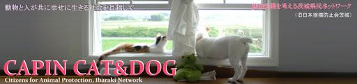 CAPIN  CAT&DOG  動物愛護を考える茨城県民ネットワーク     Blog