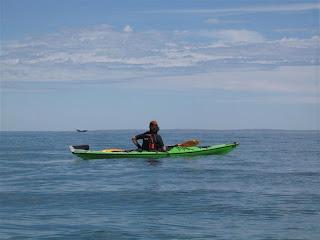 Patagonia. Expediciones en Kayak. Golfo San Jose. Peninsula Valdes