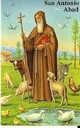 San Antonio Abad. Para los que aman a los animales.