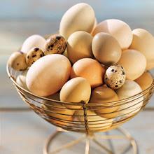 Coco (Eggs) & Co.