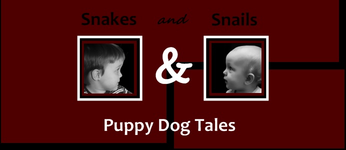 Snakes and Snails and Puppy Dog Tales