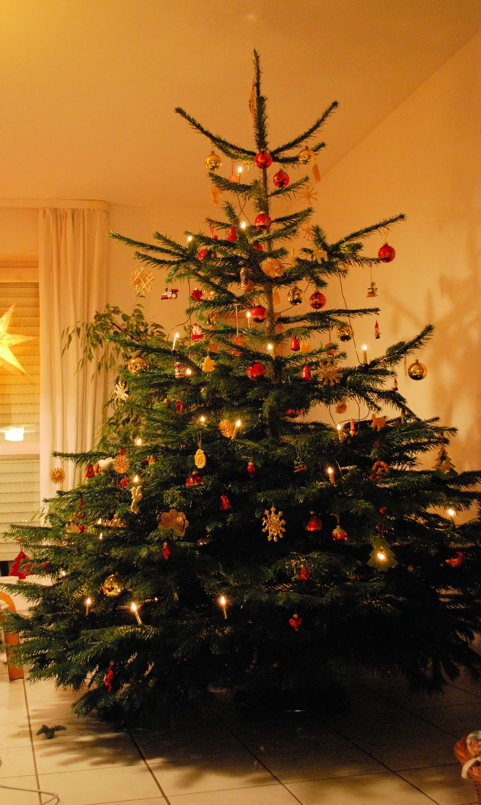 just a moment in your life our christmastree unser weihnachtsbaum. Black Bedroom Furniture Sets. Home Design Ideas
