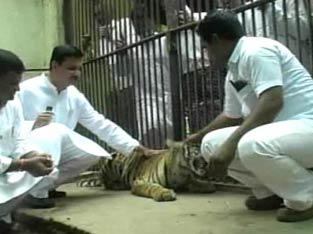 Balasaheb Thorat committed a wildlife crime