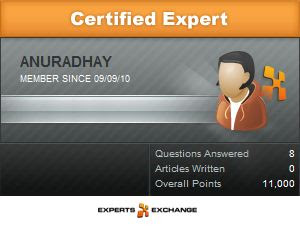 Expert Exchange Badge