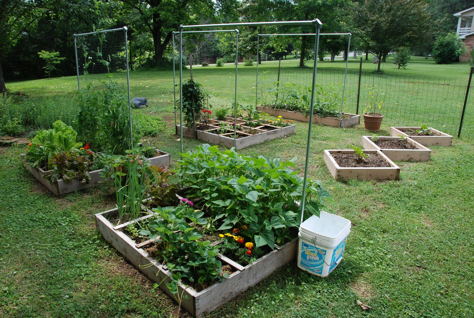 Backyard Vegetable Farming :  about our gardening adventure for this year, I?d better do it now