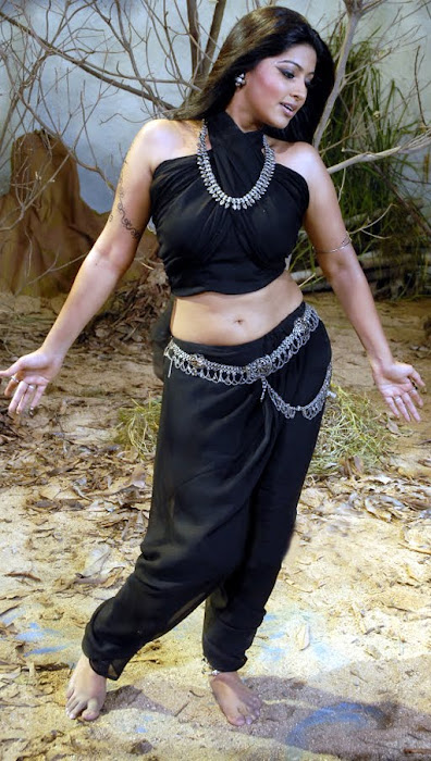 sneha spicy hot photoshoot