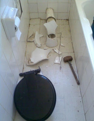 Tuvaletten Çıkan Kobra Yılanı