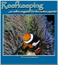 Revista Reefkeeping