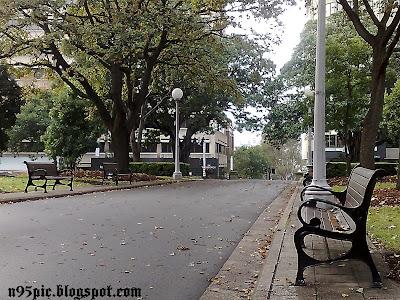 Park,hyde Park, Park in Sydney,Australia,Sydney,n95 pictures,n95,n95 mobile