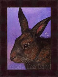 Brown Bunny Art
