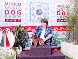 World Dog Show 2007