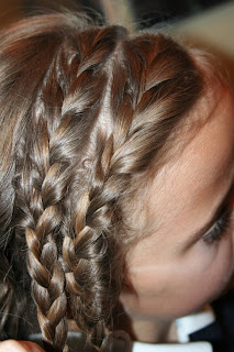 Double-Braid Twistback #5