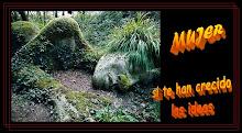 http://2.bp.blogspot.com/_7e-DJrHIkAI/SrWo8fwBU3I/AAAAAAAAB1M/3RrIhYo9zRs/S220/Mujeres_logo_blog_4.bmp