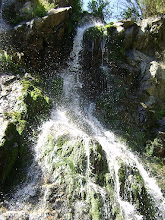 RO - Apuseni Waterfall
