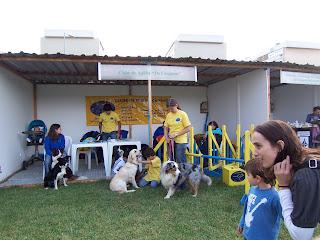 stand do clube Os Cãogurus
