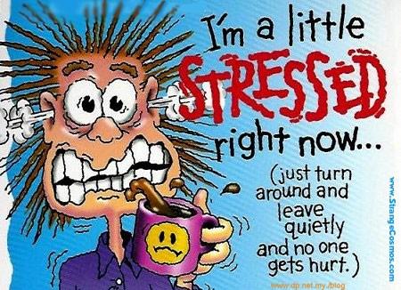 http://2.bp.blogspot.com/_7gDC6IGkcp8/TM5R28f6spI/AAAAAAAAAVE/W5UxZ_j4m0M/s1600/stress1.jpg