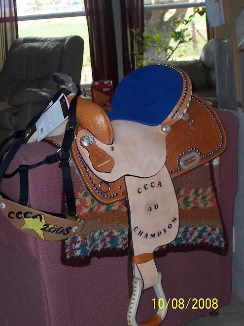 Amanda's Saddle