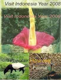 Promo Indonesia Tourist 2008