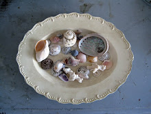 Rococo and shells