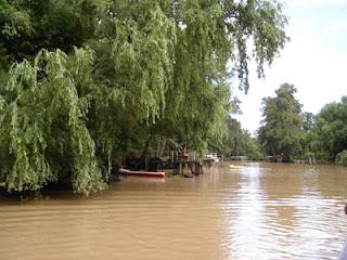 Imagenes del Delta del Paraná Delta4