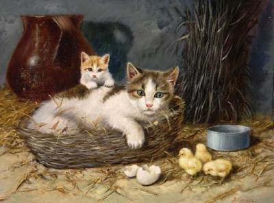 Sanidad del gatito Gato_campo_leucemia