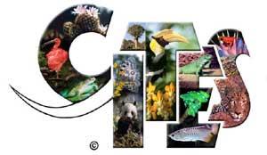 Convención sobre el Comercio Internacional de Especies Amenazadas de Flora y Fauna Silvestres Prep_02