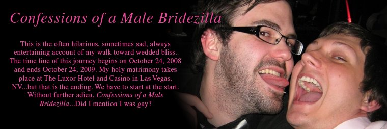 Confessions of a Male Bridezilla