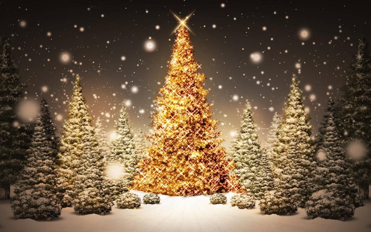 Arboles bonitos navidad - Arboles de navidad bonitos ...