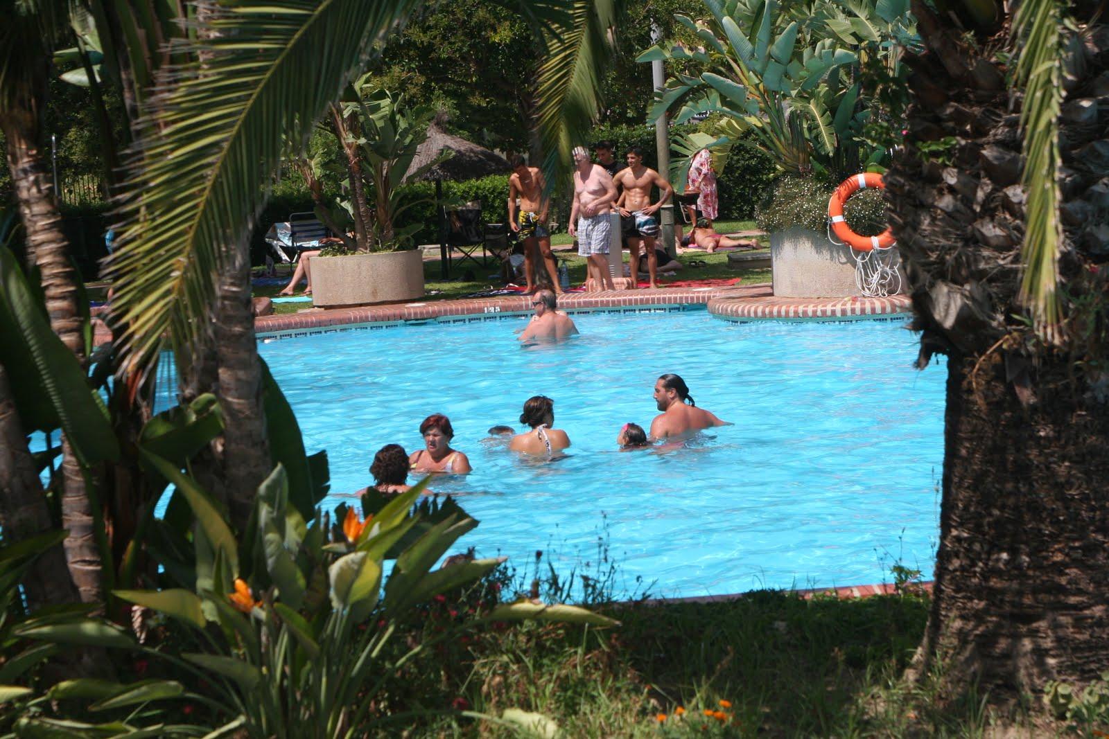Apartamentos benalbeach piscinas y jardines - Piscinas y jardines ...