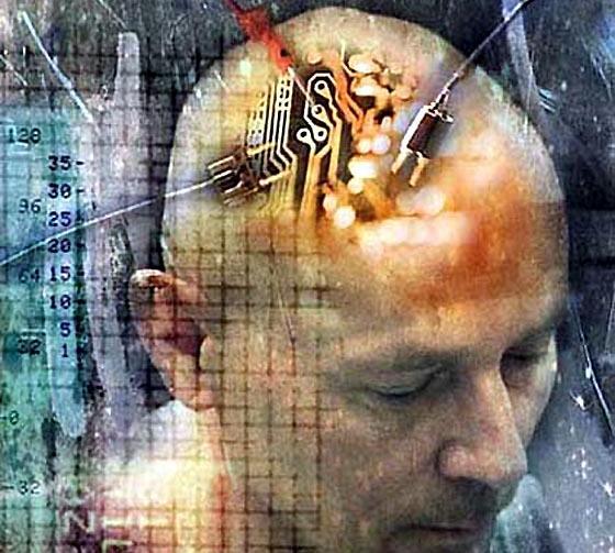 http://2.bp.blogspot.com/_7p46d30SWK8/SxNtuZEfmEI/AAAAAAAAAd0/9VivtfBcn_w/s1600/brain.JPG