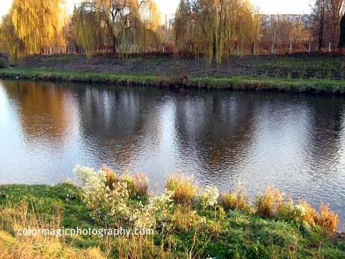 River scene in autumn