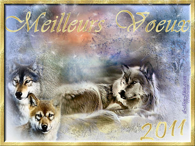 bonne année 2011  Carte-bonne-annee-2011