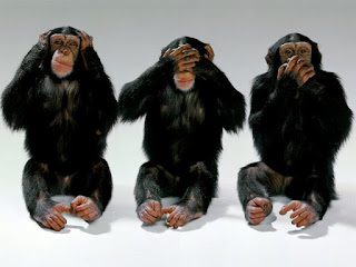 The 3 monkeys feigning ignorance - like your stakeholders?
