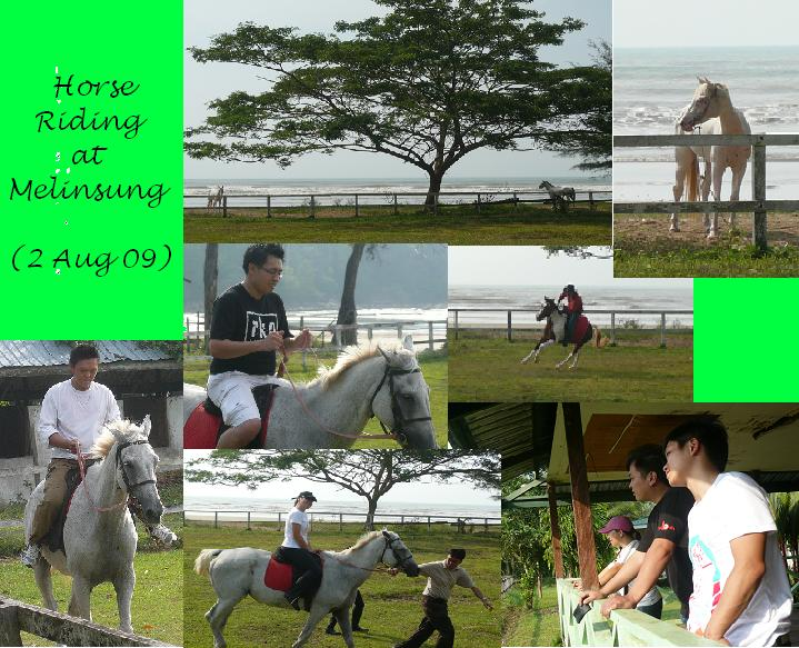 Horse Riding at Melinsung