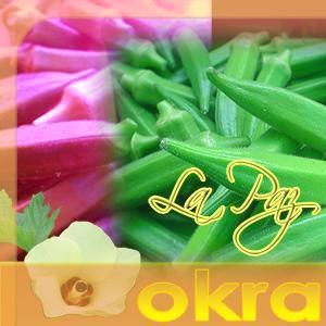 LaPaz Okra