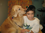 Therapy Dogs..