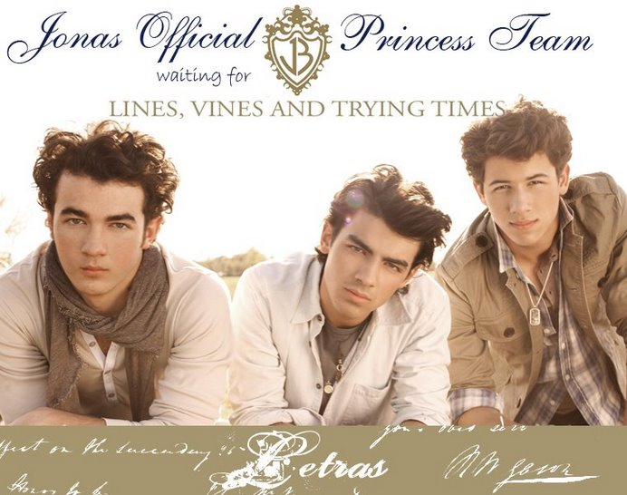 Lyrics Jonas Official Princess Team